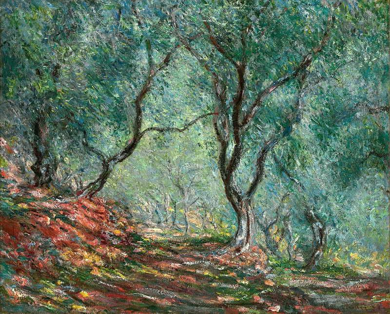 Olive Tree Wood in the Moreno Garden, 1884